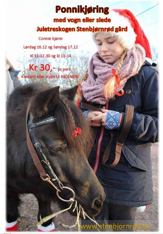 ponnykjøring